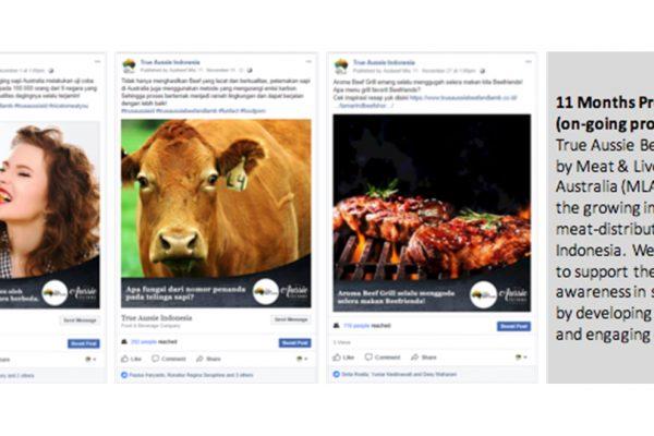 MLA Social Media Contents
